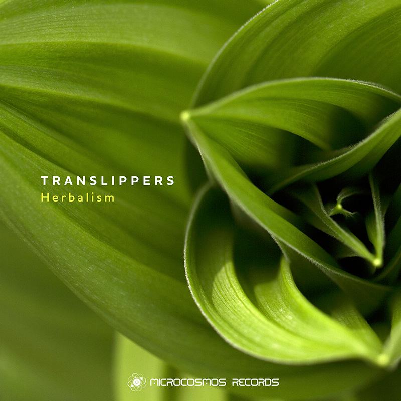 Translippers – Herbalism