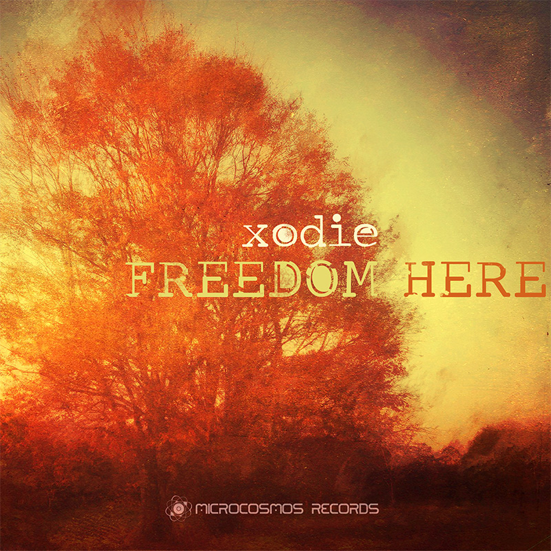 Xodie — Freedom Here